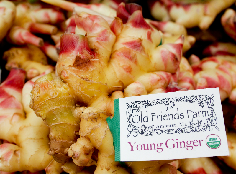 old friends farm ginger