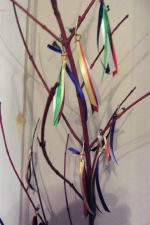 ribbon tree close-up