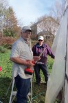 Working on the hoophouse
