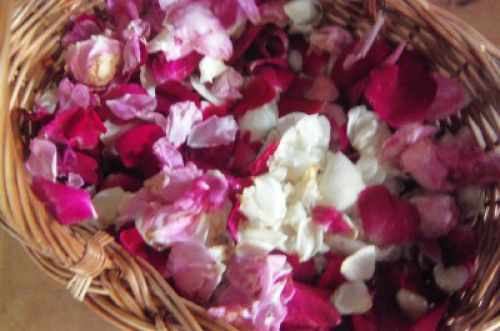 rose petals in basket