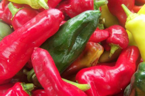 peppers for salsa