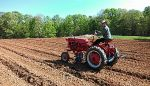 Ray on the Cub hilling potatoes