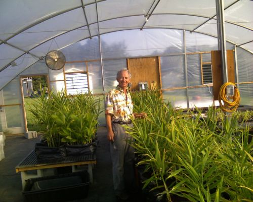 Ray in greenhouse with ginger