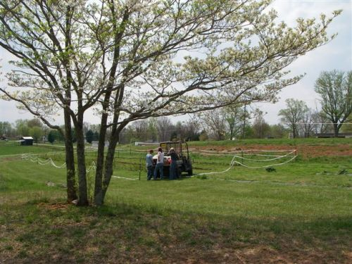 4/8/11 - Planting raspberries & blackberries