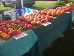 August.2017: Display of our heirloom tomatoes at Howe Meadow