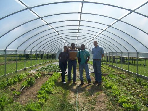 Wendell Swartzentruber, USDA/NRCS and a group of student interns paid a visiton June 6 to view our EQIP funded high-tunnel