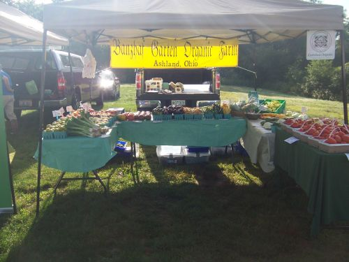 8/18/12 Market Display at Howe Meadow