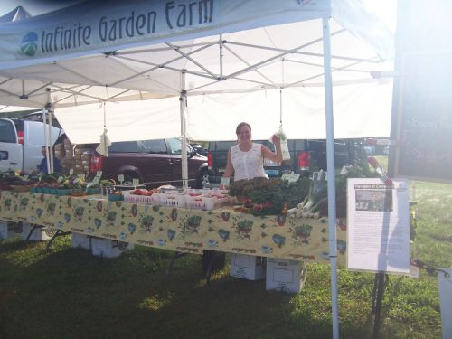 TomatoFest 2014; Infinite Garden Farm's display (featuring Larry Luschek's lovely sister Kathy)