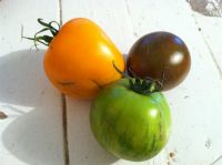 Pound of Heirloom Tomato