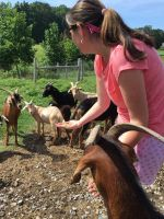 Mindfully interacting with goats