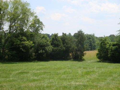 A southern pasture.