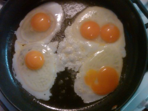 A double yoke - these are real eggs!