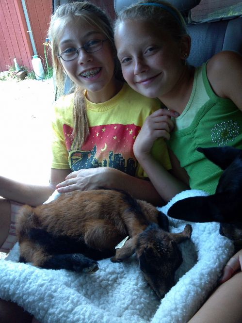 Amanda and Cheyenne soothe a goat