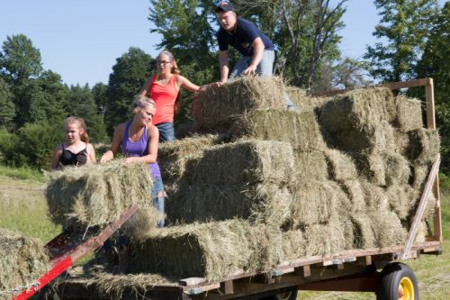Sarah, Austin, Amanda and Zach pick up hay