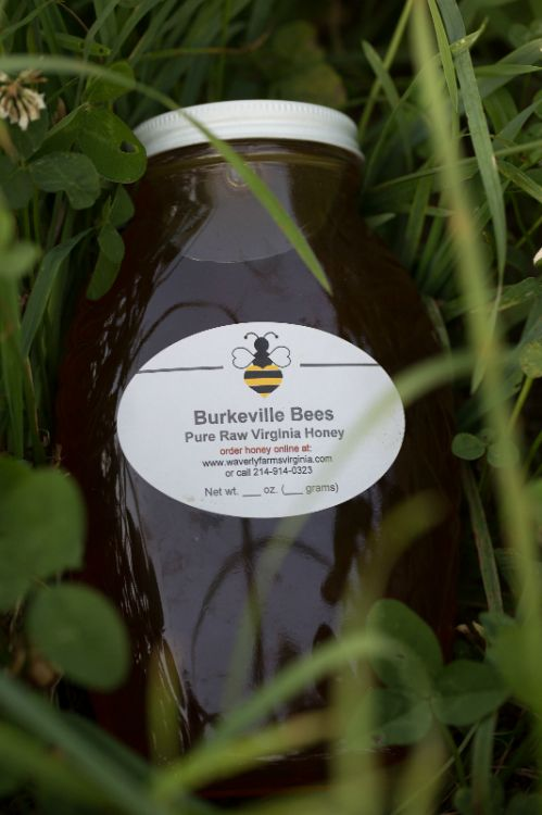 Fresh, raw, unfiltered honey from our bees goes into every jar of Burkeville Bees honey