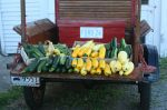 "The ""T"" loaded with Produce"