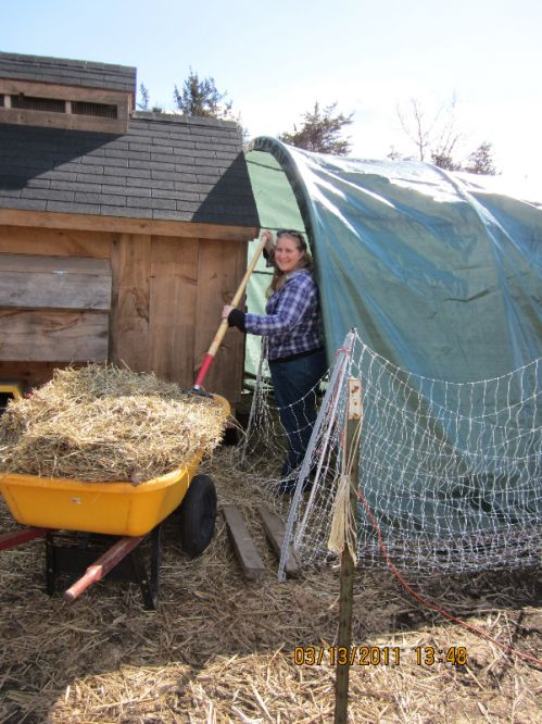 Our Friend Deb cleaning the chicken coop