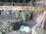 Filling barn for winter