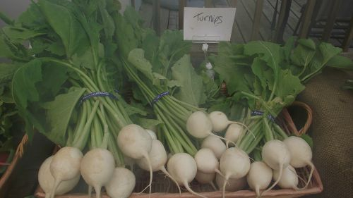 Janpaese Turnips
