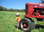 Emil and his tractor 2009