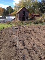 Ground posts for new hoophouse.