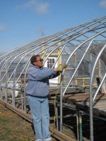 A trainee learns about greenhouse construction by... helping to construct our 24'x96' greenhouse!