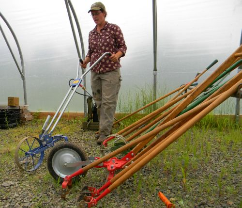 A wheel hoe can be useful for managing weeds between beds or between wide-spaced crops.