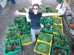 Julie with a whole lotta greens!