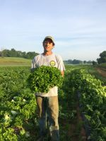 Farmer Mike with a giant head of lettuce