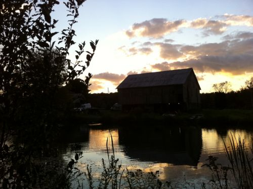 The barn in the evening...