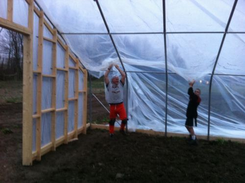 Jim and Matthew pulling plastic over hoophouse