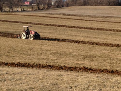 Fernando chisel plowing the new farm 3/23/12