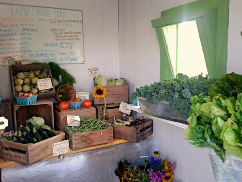 Some of the awesome produce at our Farm Stand