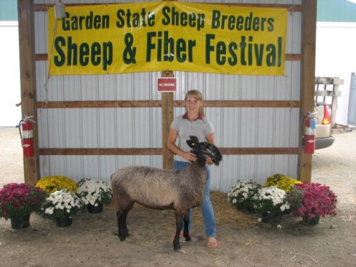 Hannah with Daphne. She won Supreme Champion Fleece
