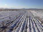 Perfect Utah powder for seeding
