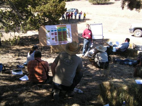 Field activities at the 2009 EBIPM Field School