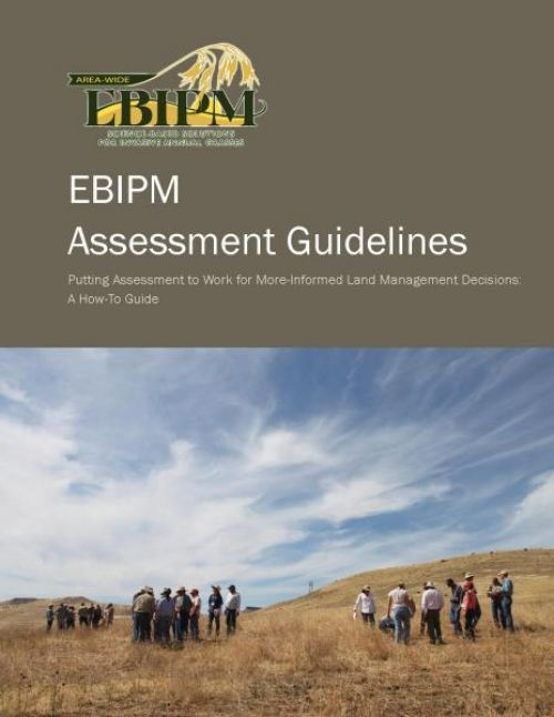 EBIPM Assessment Guidelines
