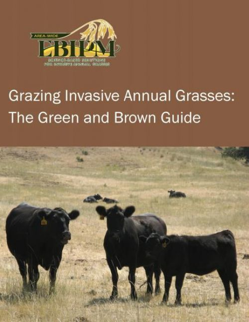 Grazing Invasive Annual Grasses: The Green and Brown Guide