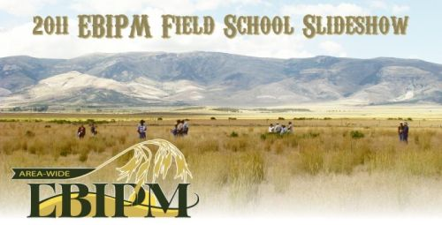 2011 EBIPM Field School Slideshow graphic