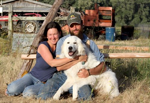 your farmers with our Great Pyrenees, Super