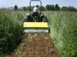 John spading tall cover crop