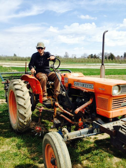 Culltivating on the tractor
