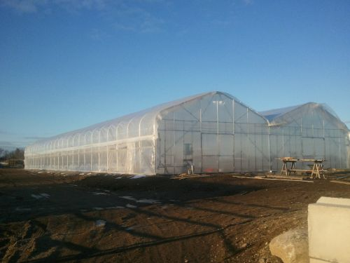 new greenhouse.