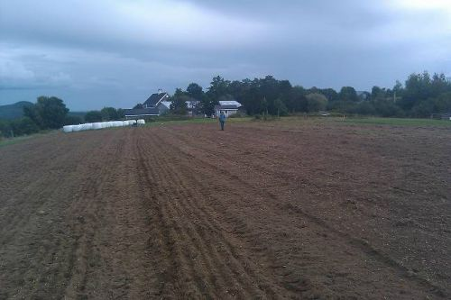 freshly tilled ground