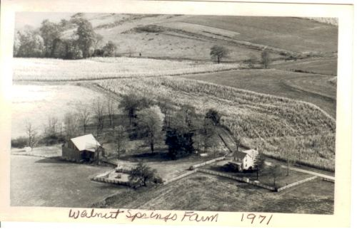 Walnut Springs Farm - Circa 1938