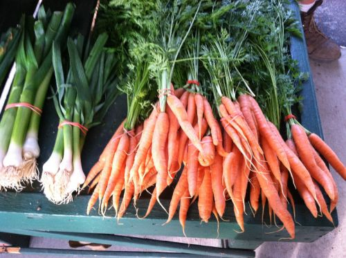 Scallions and Baby Carrots