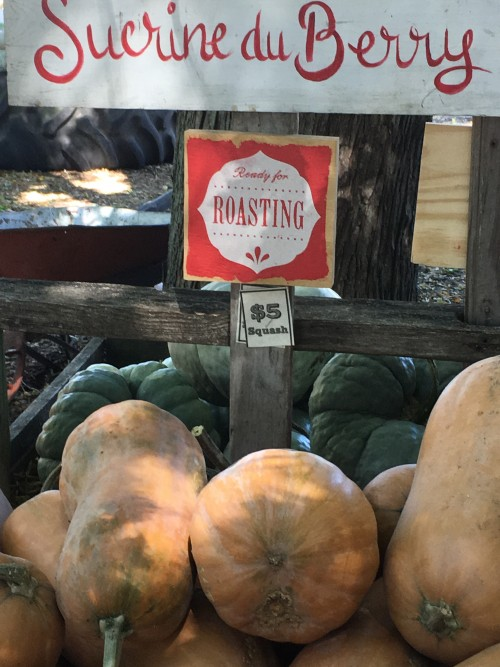 french roasting pumpkins