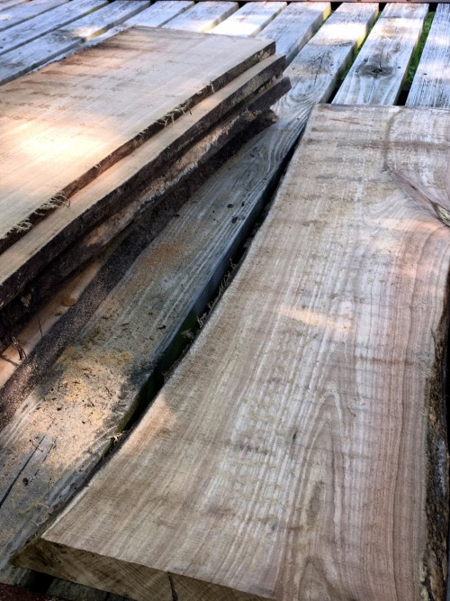 beautiful planks