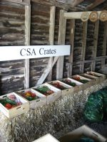CSA crates ready for pickup at the farm stand