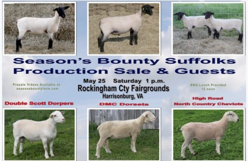 Production Sale | Seasons Bounty Farm